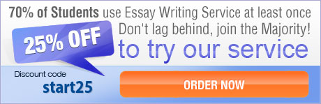 custom essay with discount